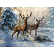 Stags at Christmas - Christmas Cards