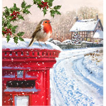 Christmas Visitor Christmas Cards