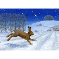 Moonlight Hare Christmas Cards