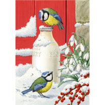 Blue Tits at Christmas - Christmas Cards