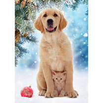 Best Friends Christmas Cards