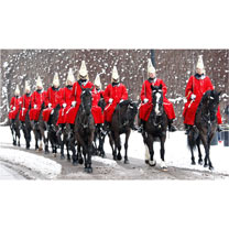 Horse Guards in the Snow Christmas Cards