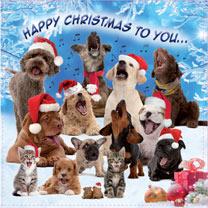 Christmas Carols Christmas Cards