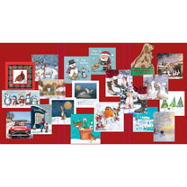 RSPCA Bargain Pack - Christmas Cards