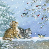 Kittens with Blue Tits - Christmas Cards