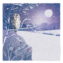 All is Quiet Twin Pack - Christmas Cards