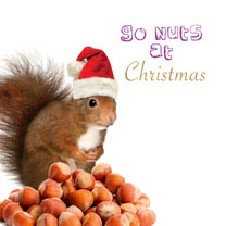 Have a Ball/Go Nuts Twin Pack - Christmas Cards