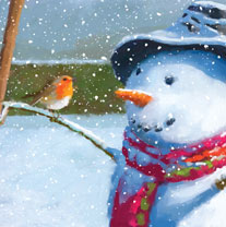 Snowman with Robin - Christmas Cards