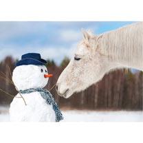 Horse & Snowman - Christmas Cards