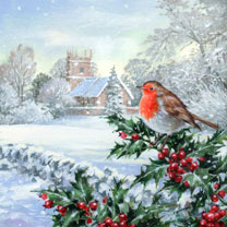 Winter Visitor Cards