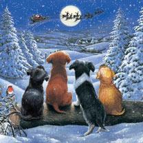 Waiting For Santa Cards - 10