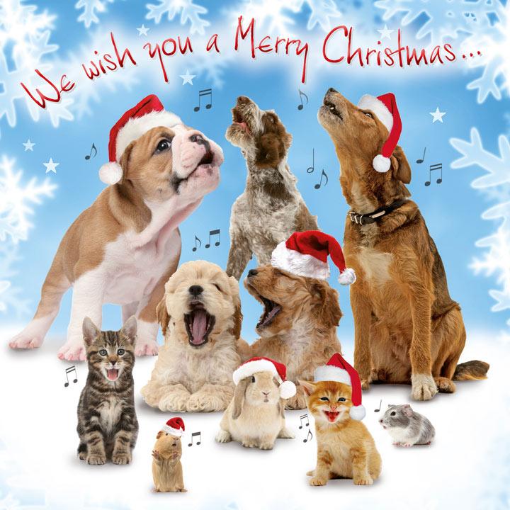 Christmas Choir Cards