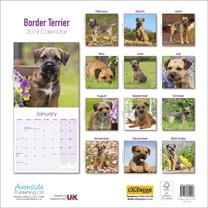 Dog Breed 2019 Calendar - Border Terrier