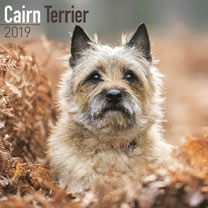 Dog Breed 2018 Calendar - Cairn Terrier