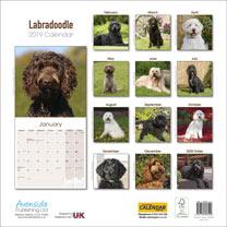 Dog Breed 2019 Calendar - Labradoodle