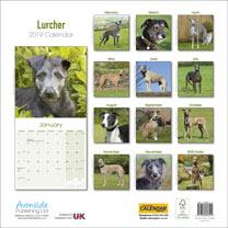 Dog Breed 2019 Calendar - Lurcher