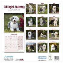 Dog Breed Calendar - Old English Sheepdog