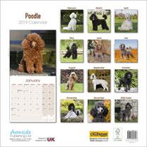 Dog Breed 2019 Calendar - Poodle