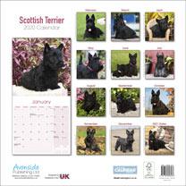 Dog Breed Calendar - Scottish Terrier
