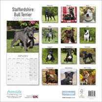 Dog Breed Calendar - Staffordshire Bull Terrier