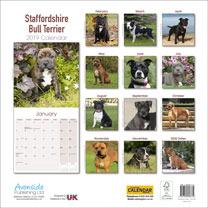 Dog Breed 2019 Calendar - Staffordshire Bull Terrier