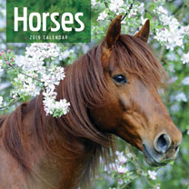 Wall Calendar - Horses