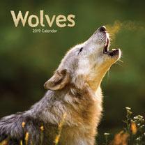 Wall Calendar - Wolves
