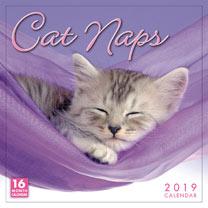 Wall Calendar - Cat Naps