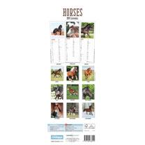 Slimline 2019 Calendar - Horses