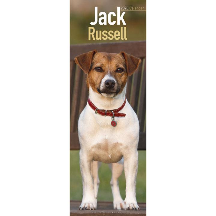 Slimline Calendar - Jack Russell