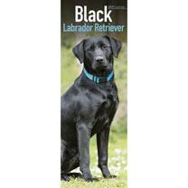 Slimline 2018 Calendar - Black Labrador Retriever