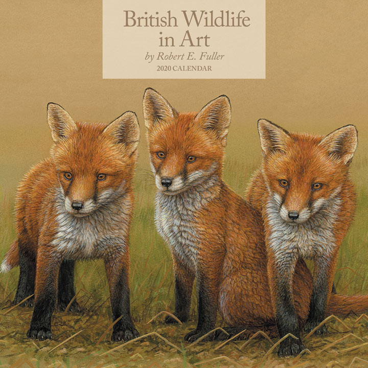 Wall Calendar - British Wildlife