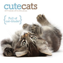 Wall Calendar - Cute Cats