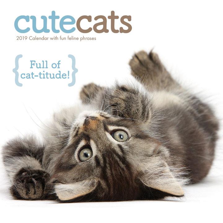 Wall Calendar - Cute Cats