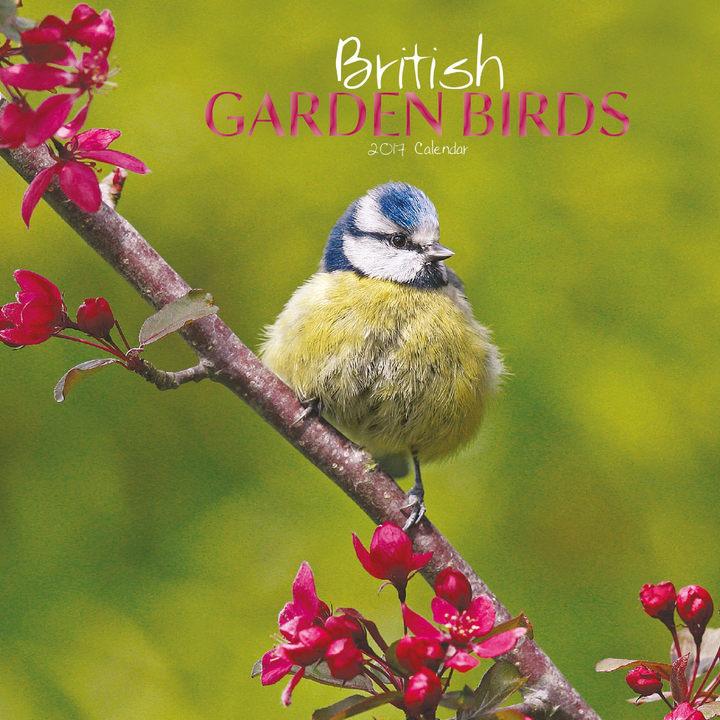 Mini Calendar - British Garden Birds