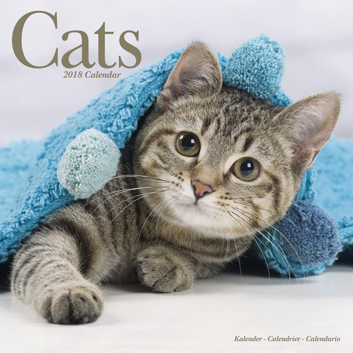 Wall Calendar - Cats