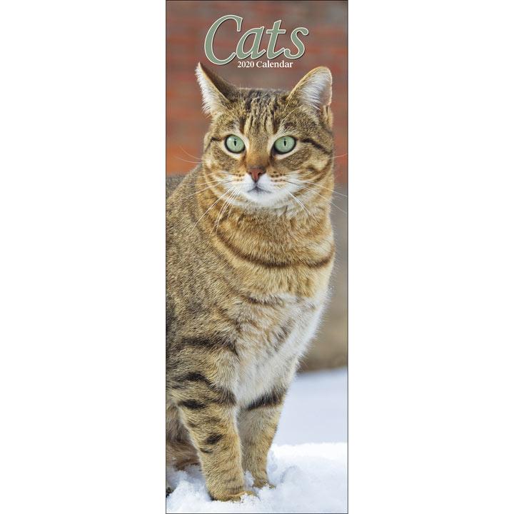 Slimline Calendar - Cats