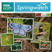 BBC Springwatch Wall