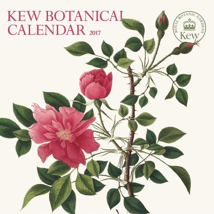 Wall Calendar - Kew Botanical