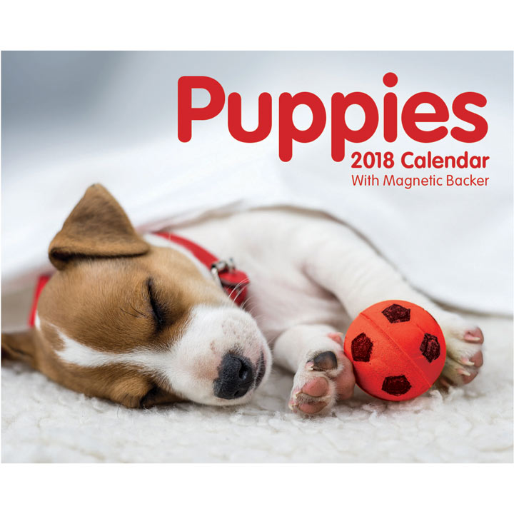 Desk Calendar - Puppies