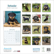 Dog Breed Calendar - Rottweiler