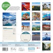 Wall Calendar - Amazing Planet