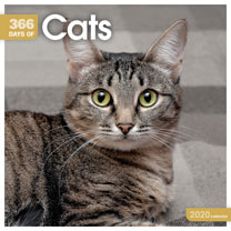 Wall Calendar - 365 Days of Cats