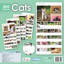 Wall Calendar - Days of Cats