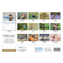 A4 Calendar - Wildlife of Britain