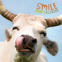 Wall Calendar - Smile