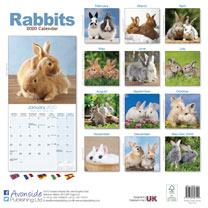 Rabbits Wall Calendar