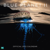 Wall Calendar - Blue Planet II