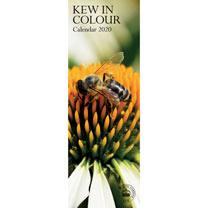 Kew in Colour Slim Calendar