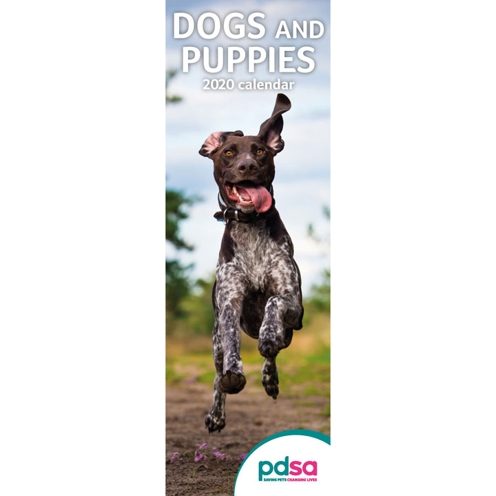 PDSA Slimline Calendar Dog & Puppy Calendar